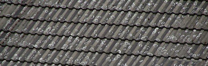 dak laten reinigen